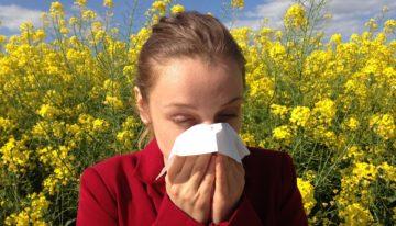 Cold, Flu, or Allergy?